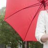 雨の日も退屈知らず!思いっきり遊べるオススメ室内遊園地のタイトル画像