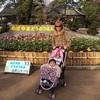 横浜周辺で無料で楽しめちゃう話題のスポットのタイトル画像