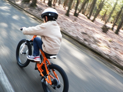 子どもが自転車で事故を起こしたら?もしもの時のために自動車保険をチェックのタイトル画像