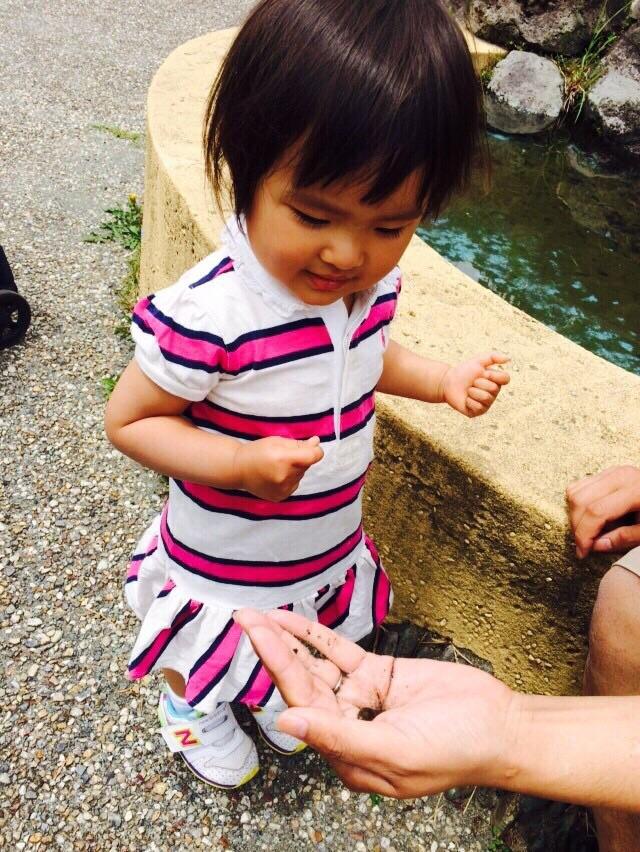 家族でお出かけ!自然に触れ合いたいなら、富士山こどもの国へ!の画像3