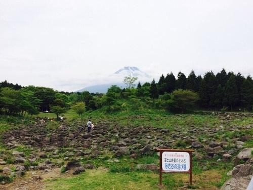 家族でお出かけ!自然に触れ合いたいなら、富士山こどもの国へ!のタイトル画像