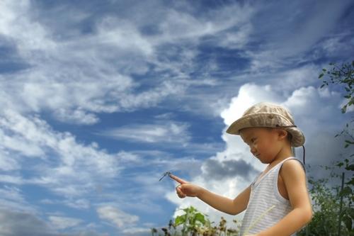 虫除け対策に!アロマで子どもにも安心な天然蚊除けをつくろうのタイトル画像