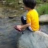「超薄味のカレー」「水の出ない蛇口」・・・。全てが初体験のサマーキャンプで、子どもはこう成長する!のタイトル画像