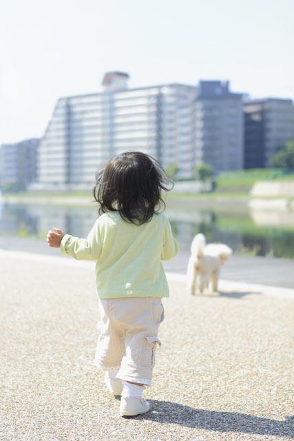赤ちゃんが生まれた時、人間嫌いの犬はどう反応したのか?の画像2