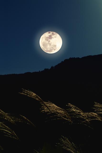 今年の『中秋の名月』は9月27日!お月見を親子で楽しむ方法の画像1