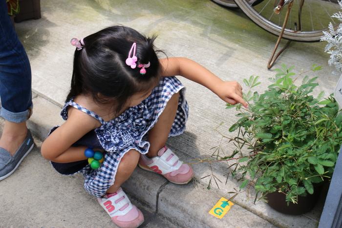 「自分なりの子育てをつくる場所」子どもとお母さんの両方が主役のおやこ保育園、その魅力とは?の画像7