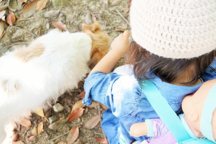 【ペットがいる家族必見!】犬と赤ちゃんの初対面は?気になる「犬が赤ちゃんに与える影響」とはの画像3