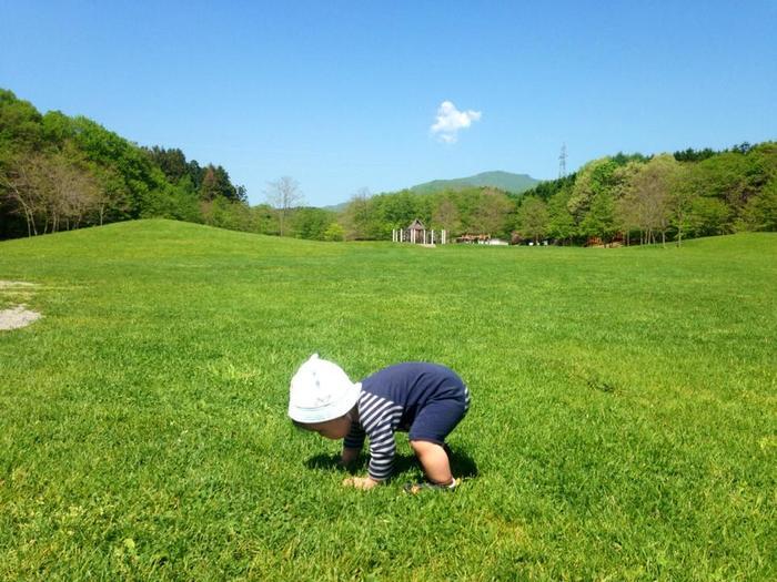 """1歳を過ぎても""""あんよ""""がまだ…歩き始めの早い遅いは将来の運動能力と関係あるの?の画像1"""