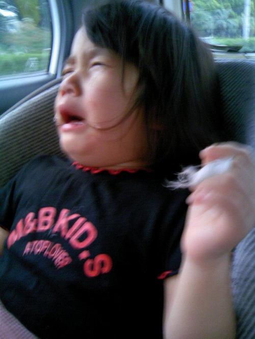 構音障害と診断された娘~本当の「障害」はどこにある?~のタイトル画像
