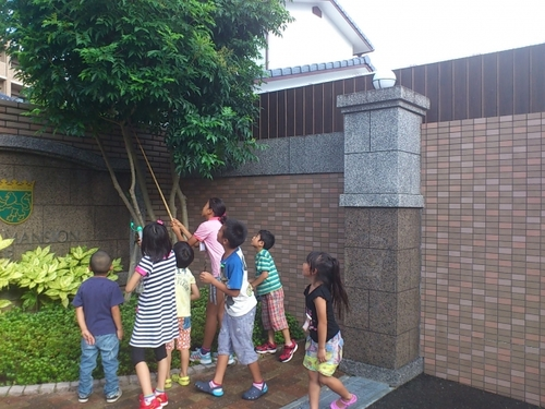 お友だちと園外で遊ぶ子どもが20年で半減!?その背景とはのタイトル画像