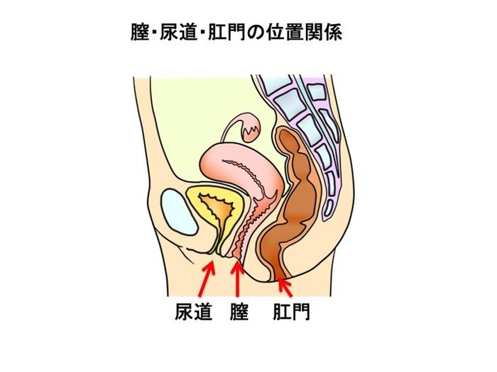 産科医が伝授!子宮筋腫と診断された時、チェックしたい3つのポイントの画像2
