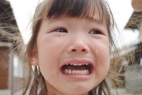 【2015年・イヤイヤ納め】魔の2歳児!?イヤイヤ期にまつわる厳選記事まとめ!!のタイトル画像