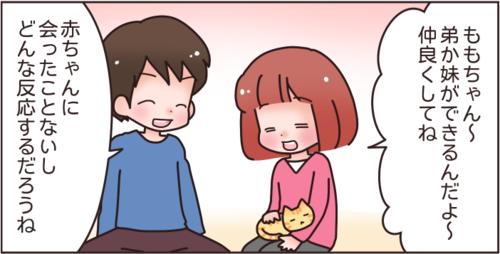 猫と赤ちゃんの同居はNG?妊娠中に、猫を手放せと言われた話…のタイトル画像