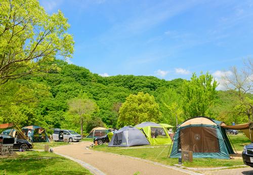 もっと気軽に森でキャンプをしよう!里山の自然に誰もが夢中になる「マッシュルームキャンプ」のタイトル画像