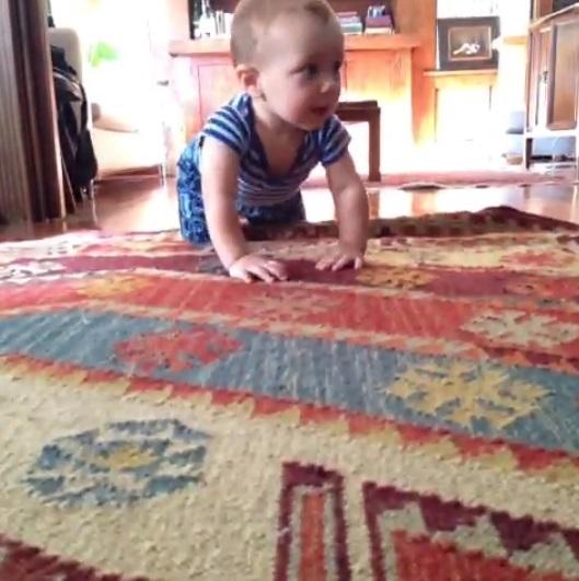 ハイハイして近づいた赤ちゃんに猫は…? 癒される動画まとめ[第3弾]の画像3