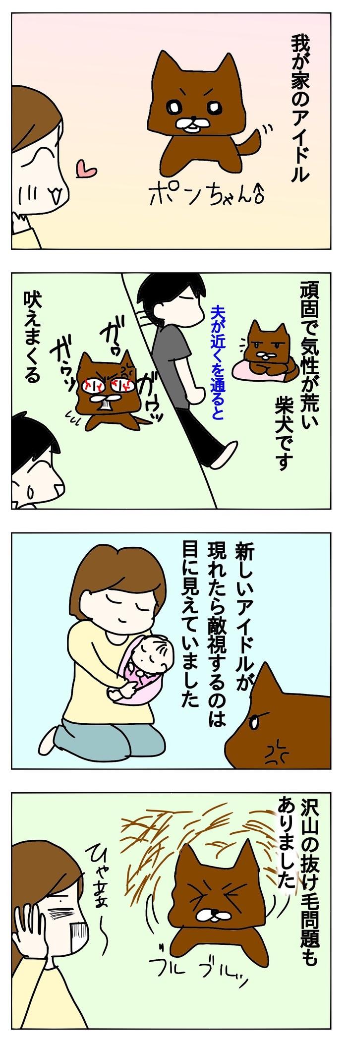 ペットも大切な家族。赤ちゃんが生まれた時、先輩ペットとの関係はどうなるの?の画像1