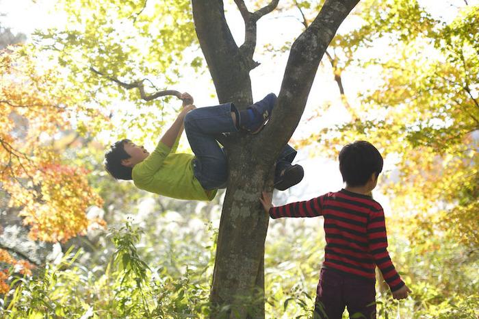 いい環境にあるから、いい子育てができるとは思わない。の画像1