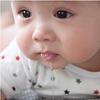 インスタで集まった #うちの子食べたい が本当に食べたくなるレベル♡のタイトル画像