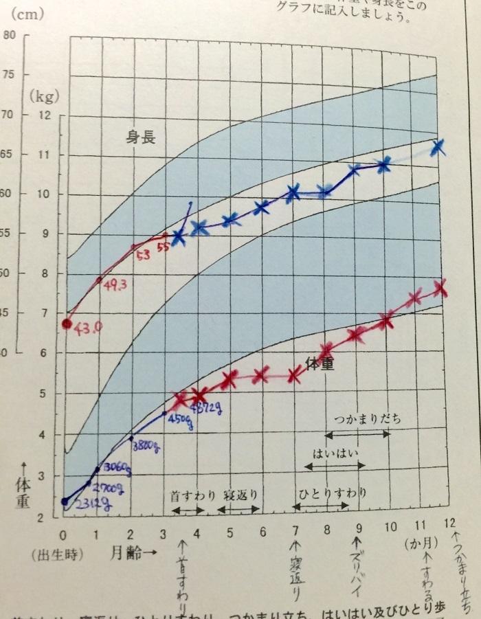 発育曲線の標準に入れない…低出生体重児だった娘の体重が増えなかった理由の画像11