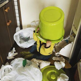 インスタで集まった「#いたずらっ子」の数々に、見ているこっちが思わず悲鳴!の画像47
