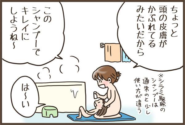 """衝撃!子どもの頭から発見された""""アレ""""の退治で変わったワタシの常識の画像4"""