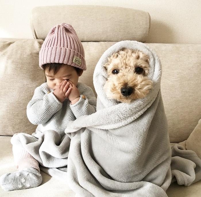 ママがこっそり覗いた、1歳女子とワンコの激カワな毎日♡の画像1