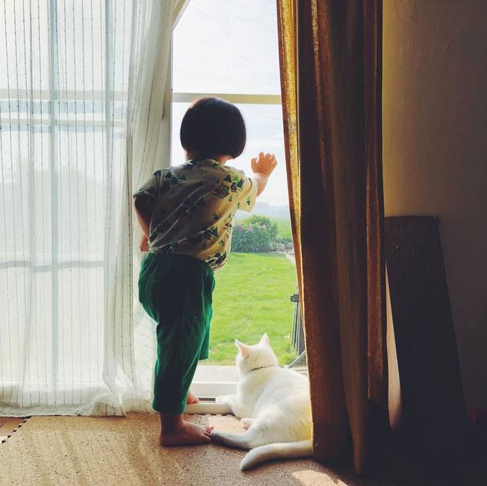 猫とボクはとっても仲良し。だって、赤ちゃんの時から一緒にいるんだもん。の画像6