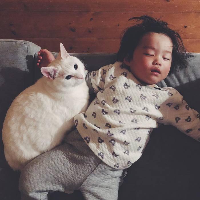 猫とボクはとっても仲良し。だって、赤ちゃんの時から一緒にいるんだもん。の画像3